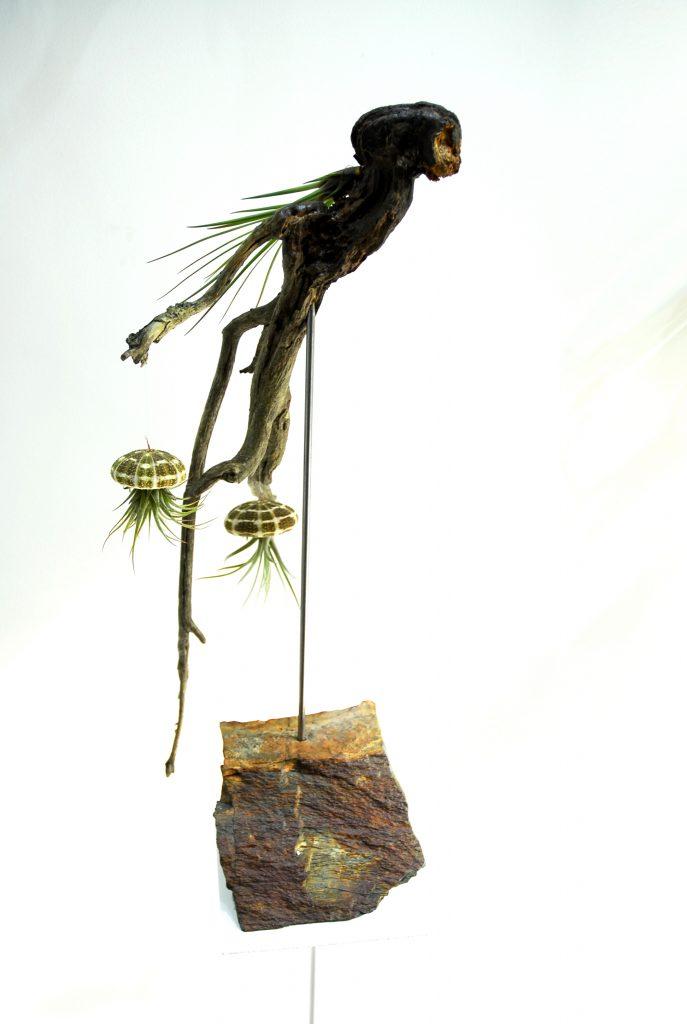 Escultura vegetal Madrid