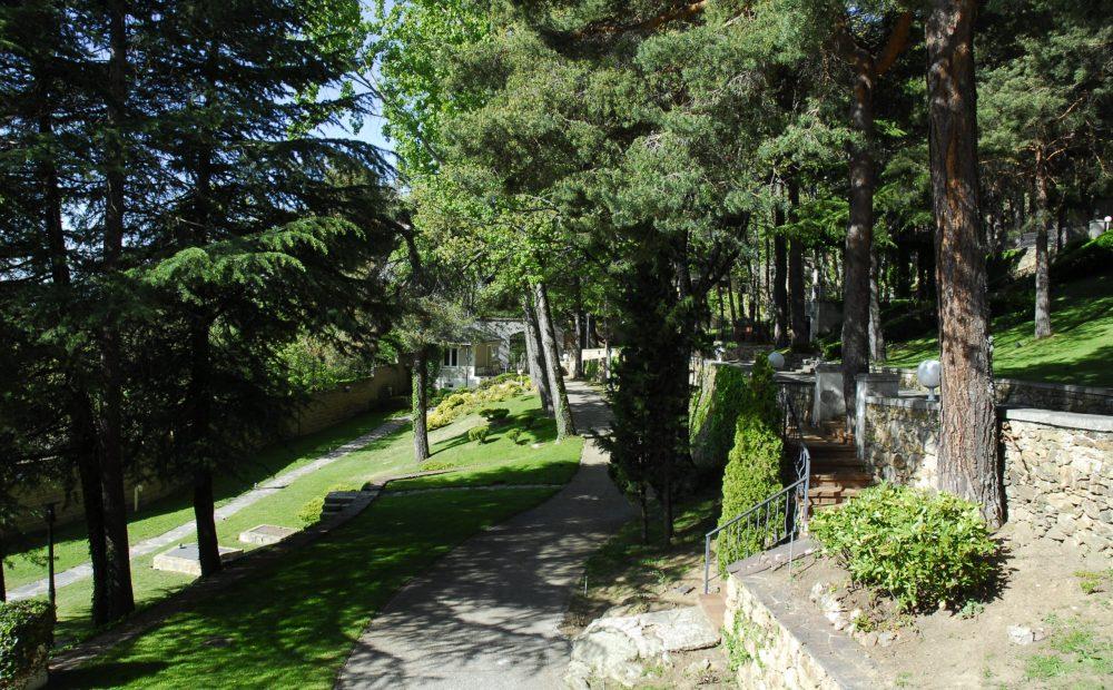 Mantenimiento jardines en espacios públicos y privados Madrid